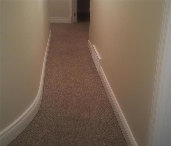 Hallway with trim, carpet and drywall