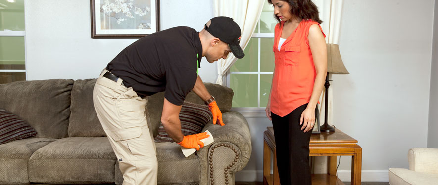Guelph, ON carpet upholstery cleaning