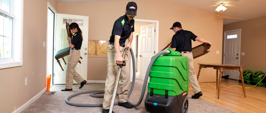 Guelph, ON cleaning services