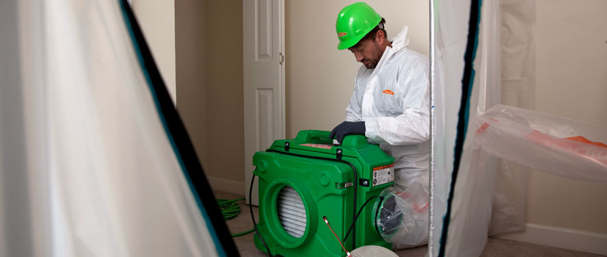 Kitchener, ON mold cleanup